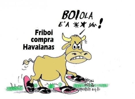 Frioboi-de-Havaianas